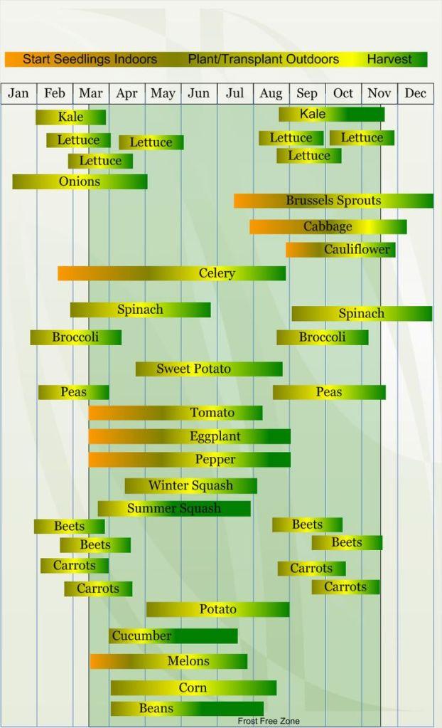 Hardiness Zone 8 planting calendar