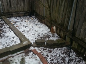 The hens don't mind a bit of snow.