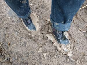 Mud. Mud. There was mud everywhere!
